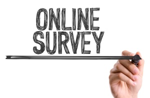 On-line Survey image